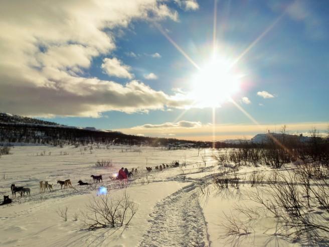 Magic Lapland Adventure